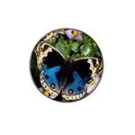 butterfly_4 Hat Clip Ball Marker (10 pack)
