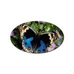 butterfly_4 Sticker Oval (100 pack)
