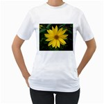 wallpaper_14089 Women s T-Shirt