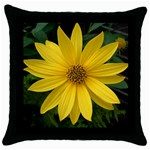 wallpaper_14089 Throw Pillow Case (Black)