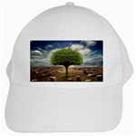 4-908-Desktopography1 White Cap