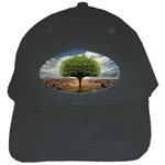 4-908-Desktopography1 Black Cap