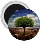 4-908-Desktopography1 3  Magnet