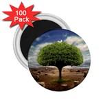4-908-Desktopography1 2.25  Magnet (100 pack)