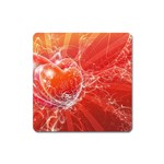 9-700-Fwallpapers_068 Magnet (Square)