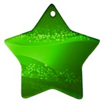 4-702-Fwallpapers_077 Ornament (Star)