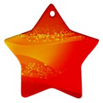4-703-Fwallpapers_079 Star Ornament (Two Sides)