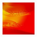 4-703-Fwallpapers_079 Glasses Cloth (Medium, Two Sides)
