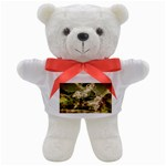2-1252-Igaer-1600x1200 Teddy Bear