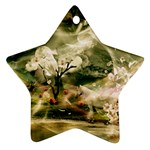 2-1252-Igaer-1600x1200 Star Ornament (Two Sides)