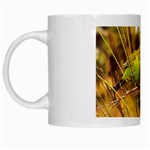 2-95-Animals-Wildlife-1024-028 White Mug