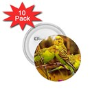 2-95-Animals-Wildlife-1024-028 1.75  Button (10 pack)