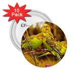 2-95-Animals-Wildlife-1024-028 2.25  Button (10 pack)