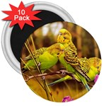 2-95-Animals-Wildlife-1024-028 3  Magnet (10 pack)
