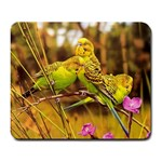 2-95-Animals-Wildlife-1024-028 Large Mousepad