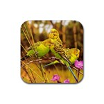 2-95-Animals-Wildlife-1024-028 Rubber Square Coaster (4 pack)