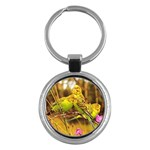 2-95-Animals-Wildlife-1024-028 Key Chain (Round)