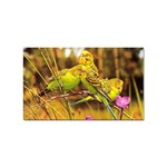 2-95-Animals-Wildlife-1024-028 Sticker (Rectangular)