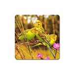 2-95-Animals-Wildlife-1024-028 Magnet (Square)
