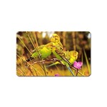 2-95-Animals-Wildlife-1024-028 Magnet (Name Card)