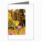 2-95-Animals-Wildlife-1024-028 Greeting Card
