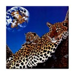 2-74-Animals-Wildlife-1024-007 Tile Coaster
