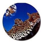 2-74-Animals-Wildlife-1024-007 Round Mousepad
