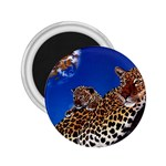 2-74-Animals-Wildlife-1024-007 2.25  Magnet