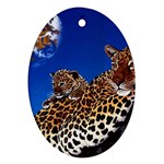 2-74-Animals-Wildlife-1024-007 Ornament (Oval)