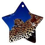 2-74-Animals-Wildlife-1024-007 Ornament (Star)