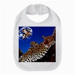 2-74-Animals-Wildlife-1024-007 Bib