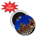 2-74-Animals-Wildlife-1024-007 1.75  Magnet (10 pack)