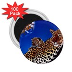 2-74-Animals-Wildlife-1024-007 2.25  Magnet (100 pack)