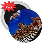 2-74-Animals-Wildlife-1024-007 3  Magnet (10 pack)