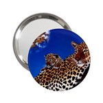 2-74-Animals-Wildlife-1024-007 2.25  Handbag Mirror