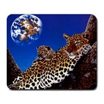 2-74-Animals-Wildlife-1024-007 Large Mousepad