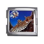 2-74-Animals-Wildlife-1024-007 Mega Link Italian Charm (18mm)