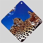 2-74-Animals-Wildlife-1024-007 Car Window Sign