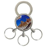 2-74-Animals-Wildlife-1024-007 3-Ring Key Chain