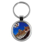 2-74-Animals-Wildlife-1024-007 Key Chain (Round)