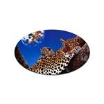 2-74-Animals-Wildlife-1024-007 Sticker Oval (100 pack)