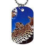 2-74-Animals-Wildlife-1024-007 Dog Tag (Two Sides)