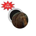 I76E 1.75  Magnet (10 pack)