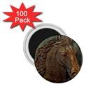 I76E 1.75  Magnet (100 pack)