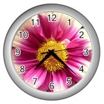 wallpaper_19674 Wall Clock (Silver)