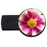 wallpaper_19674 USB Flash Drive Round (2 GB)