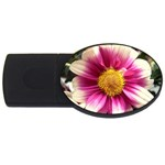 wallpaper_19674 USB Flash Drive Oval (2 GB)