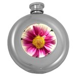 wallpaper_19674 Hip Flask (5 oz)