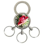1-4 3-Ring Key Chain