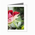 1-4 Mini Greeting Card